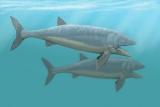 Ученые обнаружили, скорость просмотра древних рыб
