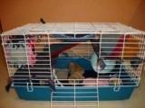 Гамак для крысы своими руками: инструкция с описанием и фото, советы