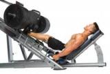 Лучшие базовые упражнения для ног: основные советы и особенности тренировки