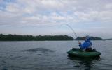 Миура: отчет о рыбалке, размер и вес улова, расположение водоема, резолюции, советы рыбакам и отдыхающим