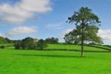 Как уменьшить кадастровой стоимости земельного участка сам? От чего зависит кадастровая стоимость