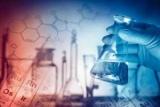 Научная новизна исследования: примеры, особенности и требования
