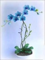 Простую схему плетения орхидеи из бисера