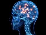 Рак 4 степени головного мозга: сколько живут? Прогноз