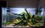 Как часто надо менять воду в аквариуме с фильтром и без?