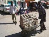 Деньги Зимбабве: история, описание, курс и интересные факты