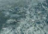 «Skyrim» - Сосна застава: информацию о местах
