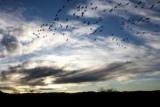 Рассказ о небе для студентов