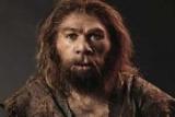 Неандертальцев убивали холодной - ученые