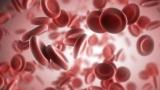 Сколько стоит общий анализ крови - термины, характеристики и дешифрования