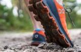 Профессиональные кроссовки для бега: обзор модели, компании, Рейтинг, Отзывы