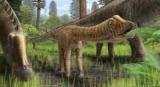 Череп молодой диплом помог мне понять, диета динозавров